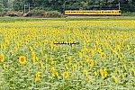 010921sangi_hokusei-1.jpg