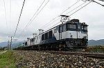 DSC_3339-1