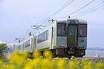 20150503_DSC_6037.jpg