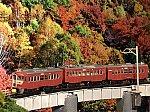 f:id:omocha_train:20191113001951j:image