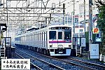 mini_DSC_1818.jpg