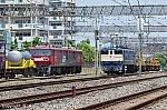 EF651115 & EH50081