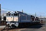 DSC_0441-1