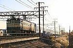 YJ7A47670.jpg