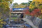 s_shukugawa_4W5A5909