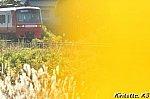 /blogimg.goo.ne.jp/user_image/07/2a/d3696ba922889b7ddc373d291a56ee18.jpg