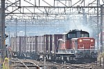 DSC_0786s.jpg