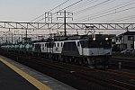 DSC_1473-1
