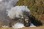 D51牽引 SLやまぐち津和野稲成号(2020年)