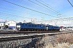 DSC_6036-1