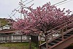 /stat.ameba.jp/user_images/20200216/16/nahanefu22/f4/3c/j/o1280085614714082316.jpg