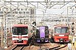DSC_7795.jpg