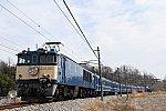 DSC_4962