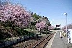 /livedoor.blogimg.jp/hayabusa1476/imgs/f/d/fd552d60.jpg