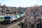 /stat.ameba.jp/user_images/20200321/00/ef510-510/bd/9b/j/o1363090914731208545.jpg