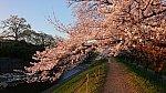 /stat.ameba.jp/user_images/20200326/00/kumatravel/0b/b6/j/o1024057614733872144.jpg