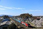 /i2.wp.com/railrailrail.xyz/wp-content/uploads/2020/03/IMG_4259-2.jpg?fit=800%2C534&ssl=1