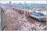 /stat.ameba.jp/user_images/20200328/19/ishichan-5861/20/7e/j/o1020068714735219819.jpg
