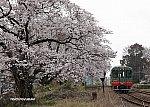 /stat.ameba.jp/user_images/20200330/23/yusuke6437/47/78/j/o1654118114736384731.jpg
