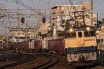 /stat.ameba.jp/user_images/20200404/11/kouyaexpress/c1/d2/j/o0800053314738386105.jpg