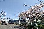 f:id:kawaturu:20200404204622j:plain