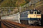 DSC_4060-01