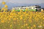 /i0.wp.com/railrailrail.xyz/wp-content/uploads/2020/04/IMG_6407-2-2.jpg?fit=800%2C533&ssl=1