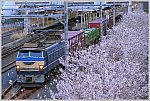 /stat.ameba.jp/user_images/20200405/18/ishichan-5861/4e/41/j/o1020068714739182262.jpg