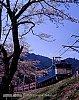 /stat.ameba.jp/user_images/20200406/17/791p39m160/0f/b9/j/o0813102414739652549.jpg