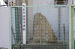 /stat.ameba.jp/user_images/20200407/23/hankai-161/85/07/j/o0494032814740282333.jpg