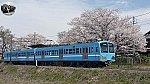 f:id:hato_express:20200408030808j:plain