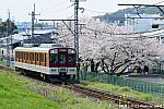 3N5_2550 - コピー