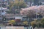 /stat.ameba.jp/user_images/20200408/20/yakanisi-4786/5d/21/j/o0680045414740675134.jpg