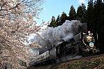 /stat.ameba.jp/user_images/20200404/12/jyoukiya498/ba/ea/j/o2000133314738420409.jpg
