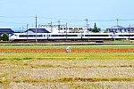 /stat.ameba.jp/user_images/20200410/09/kamesansgameblo/e9/3e/j/o1240082714741355178.jpg