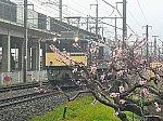 /blogimg.goo.ne.jp/user_image/07/a8/cb181b27e614cb4a9523235d172202e5.jpg