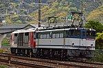 f:id:kyouhisiho2008:20200423203213j:plain