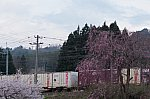 UR19A-12612.jpg