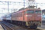81x4_20050319