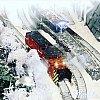 f:id:omocha_train:20190719090827j:image