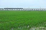 /i2.wp.com/railrailrail.xyz/wp-content/uploads/2020/06/IMG_1406-2.jpg?fit=800%2C534&ssl=1