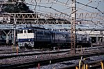 2020_06_22tsugaru1p.jpg