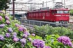 /stat.ameba.jp/user_images/20200625/22/tetsumamire/ec/31/j/o1080071614779704986.jpg