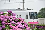 /stat.ameba.jp/user_images/20200623/22/m-mori0918/97/ca/j/o1349090014778734582.jpg
