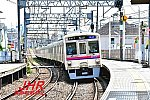 mini_DSC_4192.jpg