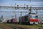 DF112DSC_9804-2.jpg