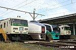DSC05546-1-1