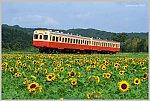/stat.ameba.jp/user_images/20200705/19/ishichan-5861/b4/33/j/o1020068714784651907.jpg