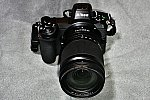 Nikon Z6&NIKKOR Z24-200mmf/4-6.3