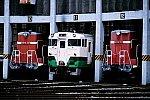2020_07_17aiduwakamatsu.jpg